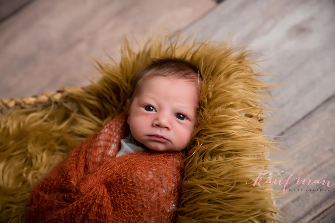 Newborn and Family Photography Sharon 3