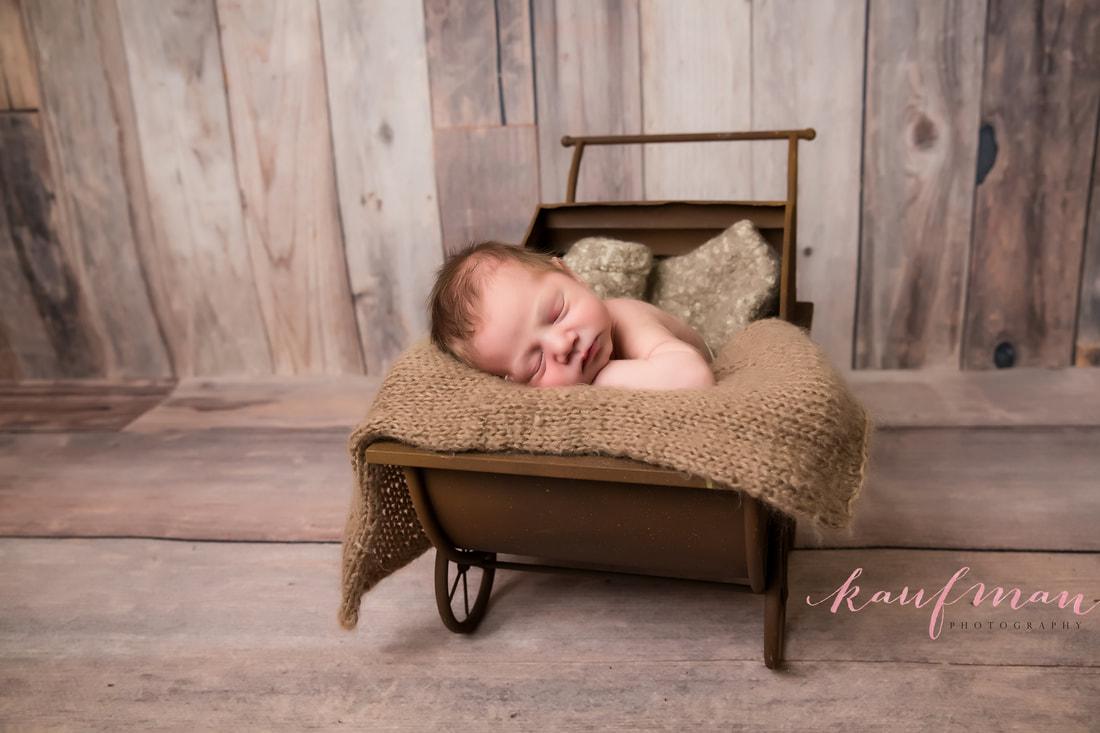 Newborn and Family Photography Sharon 7