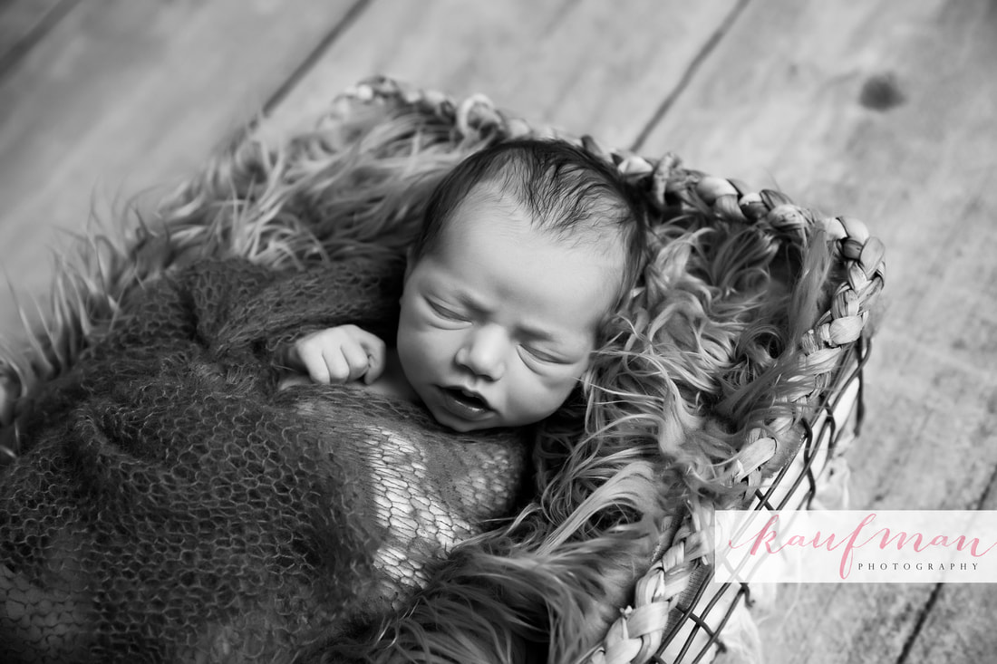 Newborn and Family Photography 8