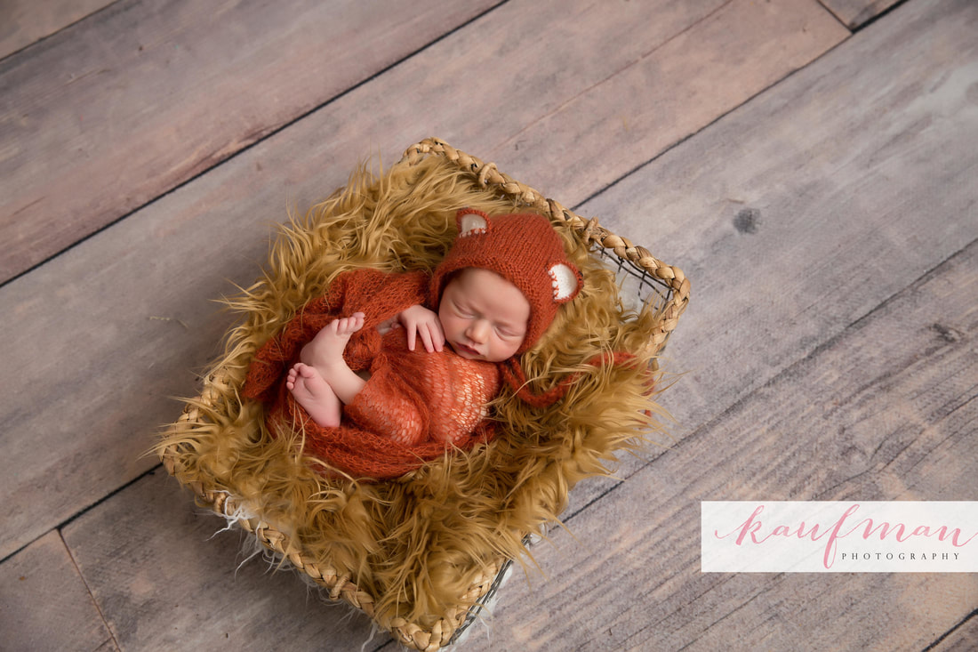 Newborn and Family Photography 7